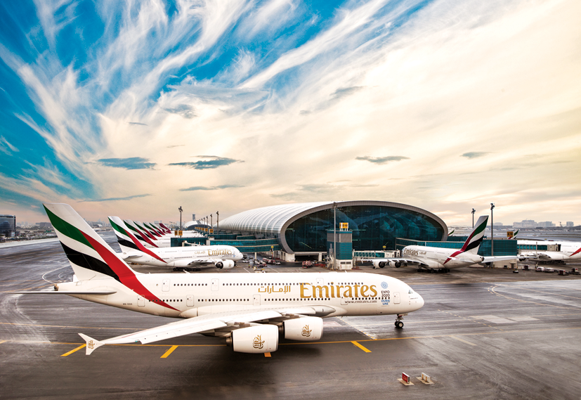Emirates Bird