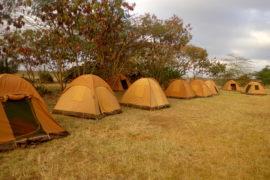 KWS Twiga Campsite