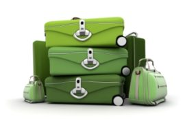 Luggage kit in green shades
